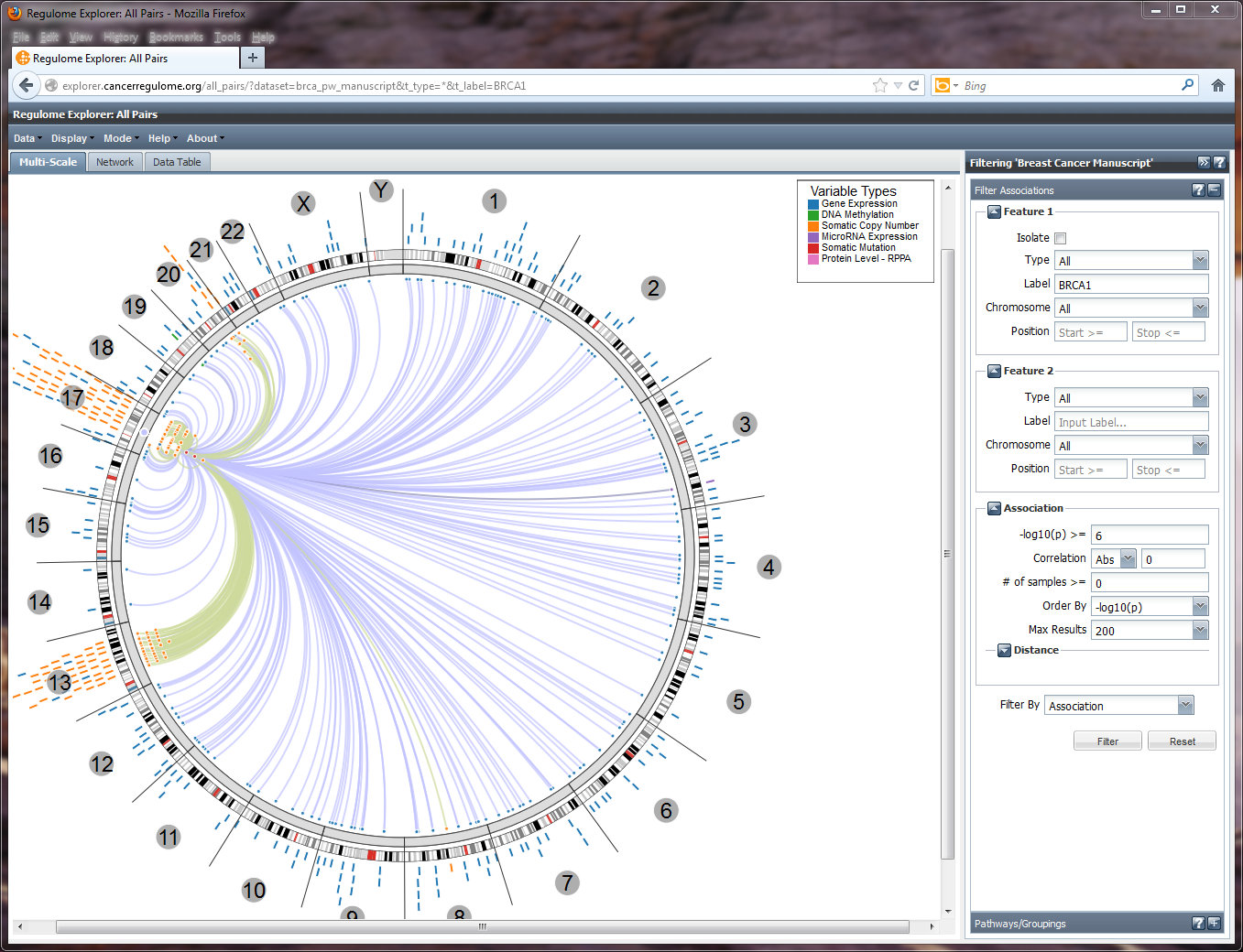 Regulome Explorer All Pairs - Quick Guide BRCA1 Associations.png