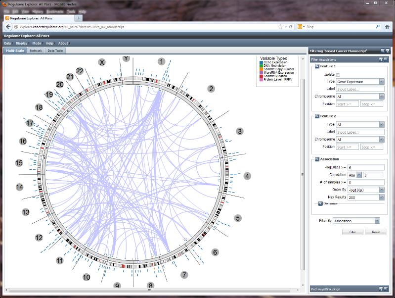 Regulome Explorer All Pairs - Initial View.png